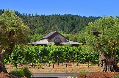 3225-3226-Healdsburg-Elite-Retreat-THUMB.jpg