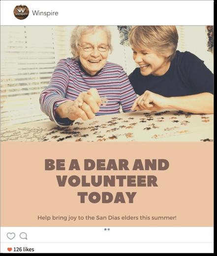 IG_Volunteer_Example_v2