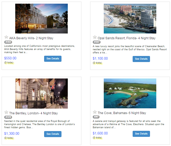 Sample online vacation packages - end-of-year online auction items for nonprofits