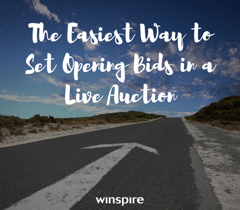 The easiest way to set opening bids on live auction items for How to bid at a live auction
