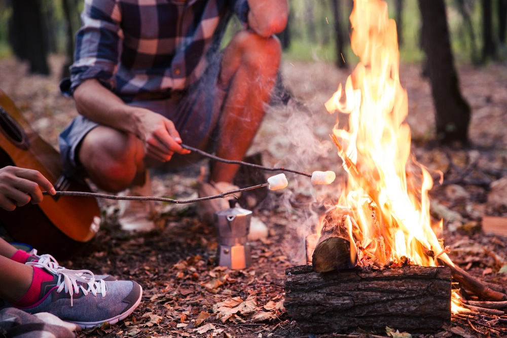 Close-Up of 2 People Toasting Marshmallows