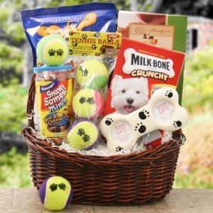 silent auction gift baskets for pets